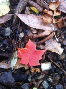 """Leaf"" (Sherron Burns)"